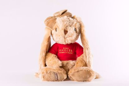 Picture of Hassler Bunny